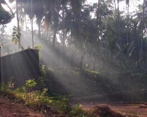 Nerumkaitakkota - My Ancestral Temple hari varma photos - kozhikode